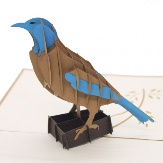 Brown & Blue Bird