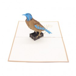 Brown & Blue Bird
